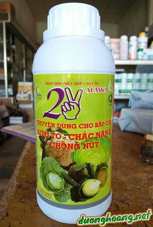 2V alaska, thuốc giúp bắp cải cuộn chặt hơn, cuộn bắp cải,to chắc chống nứt bắp cải