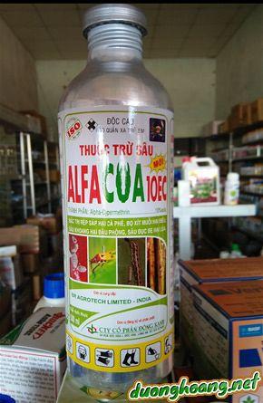 Alfacua 10EC, đặc trị rệp sáp hại cà phê, bọ xít muỗi hại điều, sâu khoang hại đậu phộng, sâu đục bẹ hại lúa.