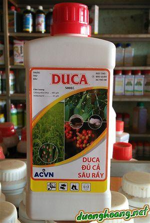 duca 500EC, trị sâu, rệp, trên tiêu, mọt đục cành, đục quả trên cà phê