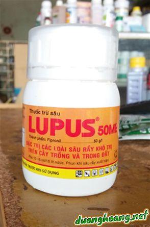 lupus 50Me, hoạt chất fipronil, trị kiến, mối, sâu rầy kháng thuốc
