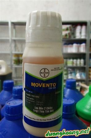 Thuốc trừ sâu Movento 150OD, là thuốc thế hệ mới, lưu dẫn 2 chiều, diệt côn trùng gây hại ở phần rễ, hiệu quả cao, kéo dài,tiết kiệm chi phí và công phun