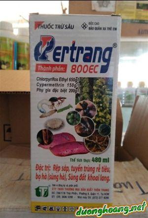 Pertrang 800EC, đặc trị sùng hà (bọ hà), sùng đất khoai lang, trị rệp sáp cà phê, tuyến trùng rễ tiêu, chlopyrifos Ethyl và cypermethrin