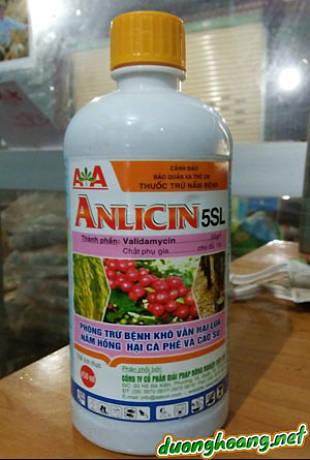 Thuốc trừ nấm bệnh Anlincin 5SL, phòng trừ bệnh khô vằn hại lúa, nấm hồng, khô quả, navalyn, diệt khuẩn, là thuốc trừ nấm lưu dẫn, phòng trừ bệnh rất tốt.