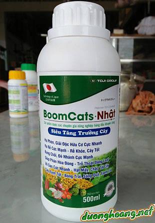boomcats nhật, hạ phèn, giải đọc hữu cơcực nhanh, ra rễ cực mạnh, rễ khỏe, cây tốt, bung chồi, đẻ nhánh cực nhanh, giúp phân hóa đòng, mầm hoa
