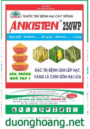 ankisten 250 wp thuốc trừ bệnh