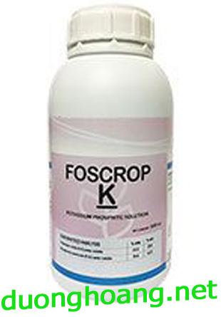 phân bón lá foscrop-k